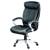 Dc9102 - Director Chair