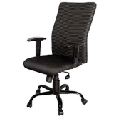 Dc9117 - Director Chair