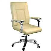 Dc9123 - Director Chair